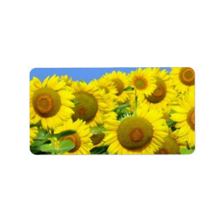 Sunflower Fields Label