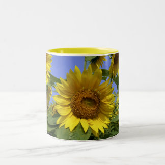Sunflower from Provence Two-Tone Coffee Mug