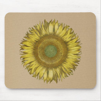 Sunflower - Helianthus on sandy background Mouse Pad
