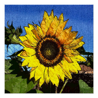 Sunflower Illustration Perfect Poster