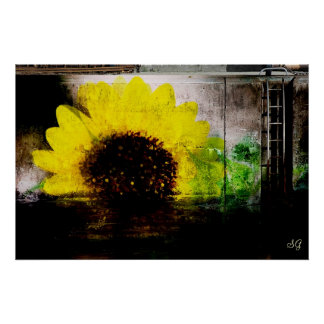 Sunflower Image Print