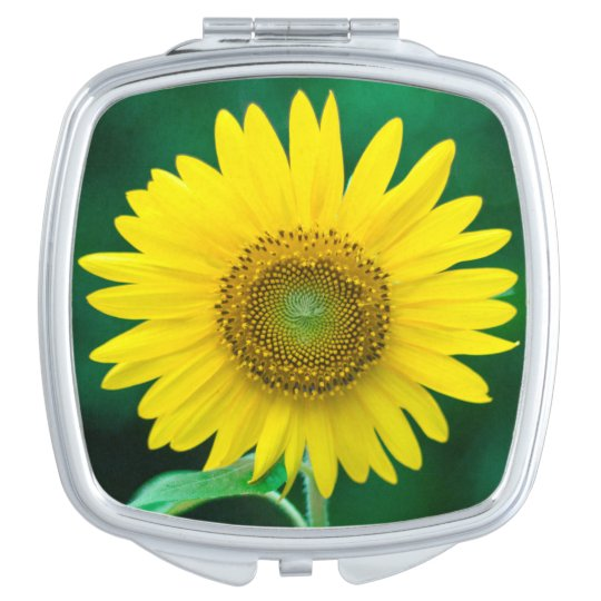 Sunflower in Summer Square Compact Mirror