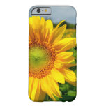 Sunflower iPhone 6 case Barely There iPhone 6 Case