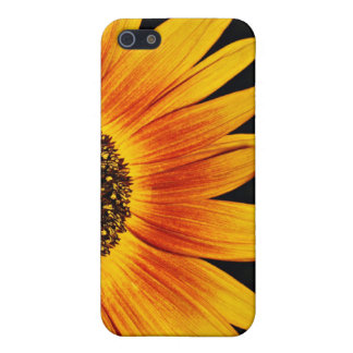 'Sunflower' iPhone Case iPhone 5/5S Case