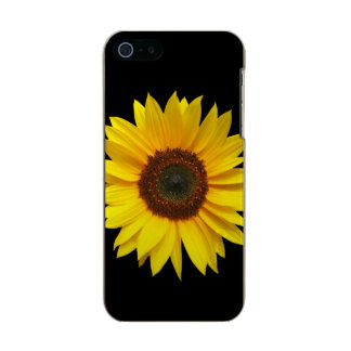 Sunflower iPhone SE/5/5S Incipit Shine Case