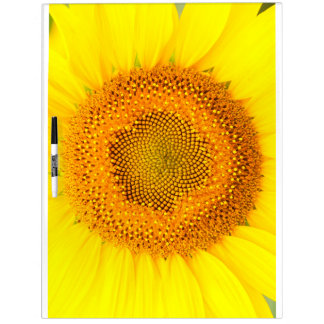 Sunflower Large Dry Erase Board