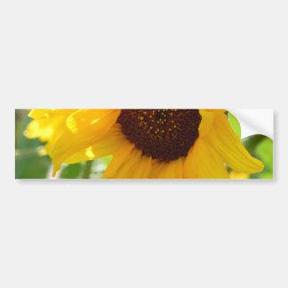 Sunflower Love Bumper Sticker
