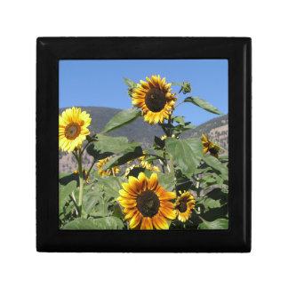 Sunflower Mountains Keepsake Boxes