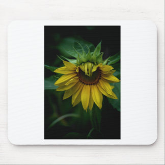 Sunflower Mouse Pads