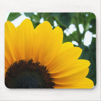 Sunflower Mouse Mats
