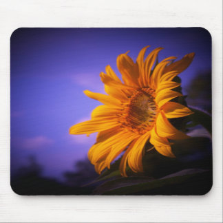 Sunflower Mousepads