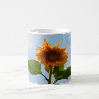 Sunflower Mugs