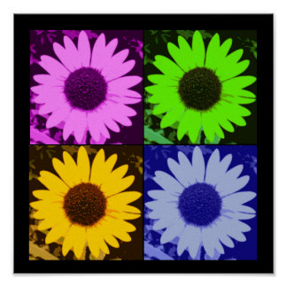 Sunflower Multi-Color Poster