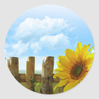 Sunflower on a Sunny Day Classic Round Sticker