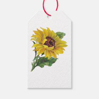 Sunflower Pack Of Gift Tags