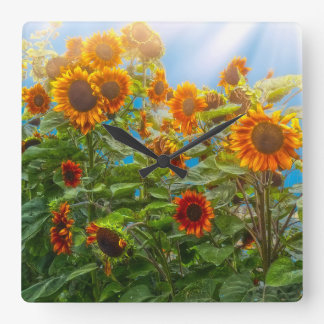 Sunflower Pack Square Wall Clock