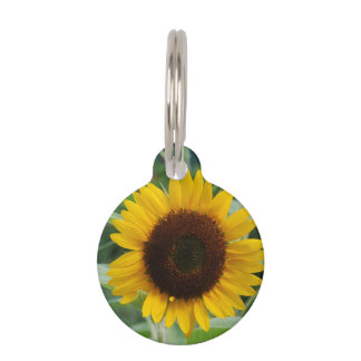 Sunflower Pet Name Tag