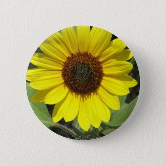 Sunflower Plant Round Button