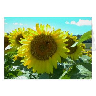 Sunflower Power--Card Card