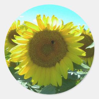 Sunflower Power-Sticker Classic Round Sticker