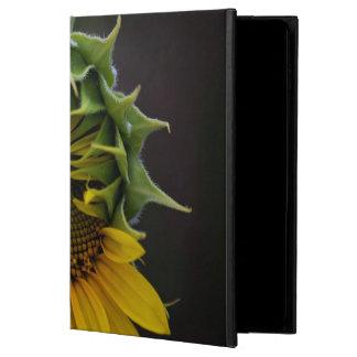Sunflower Powis iPad Air 2 Case