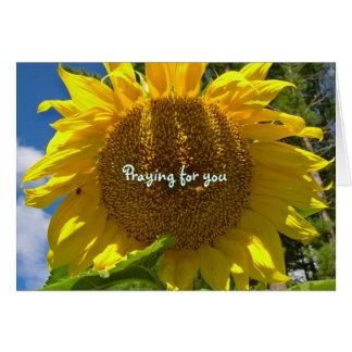 Sunflower Praying Card