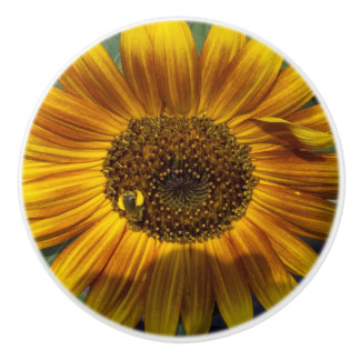 Sunflower Pull Ceramic Knob