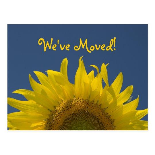 Sunflower Rising Change of Address Announcement Postcard