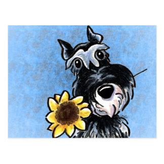 Sunflower Schnauzer Off-Leash Art™ Postcard