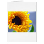 Sunflower Seasonal Inspirationals Greeting Cards