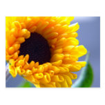 Sunflower Seasonal Inspirationals Postcard