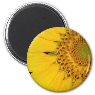 Sunflower Secrets magnet
