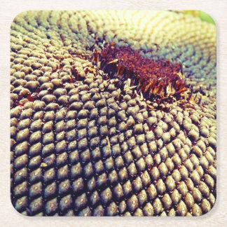 Sunflower Seed Coaster