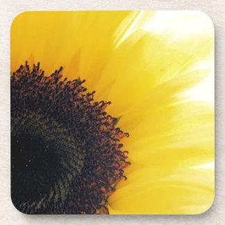 Sunflower Shine Beverage Coasters
