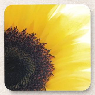 Sunflower Shine Coaster
