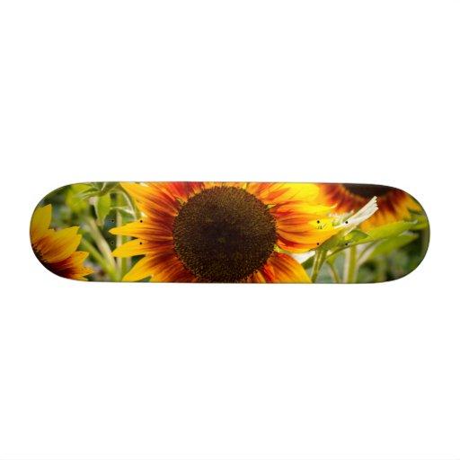 Sunflower Skateboard