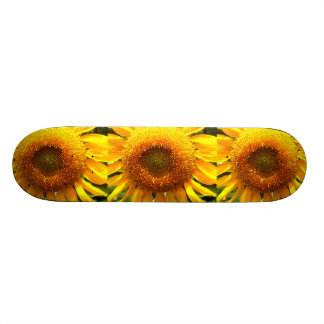 Sunflower Skateboard Decks