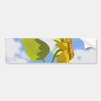 Sunflower Sky Photo Bumper Sticker
