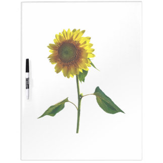 Sunflower Standing Tall Dry Erase Board