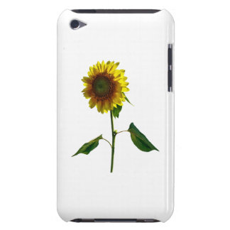 Sunflower Standing Tall iPod Touch Cover