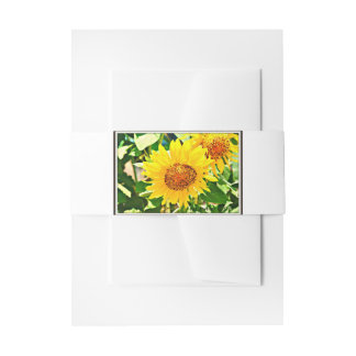 Sunflower Stationary Invitation Belly Band