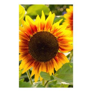 Sunflower Custom Stationery