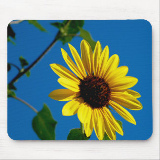 Sunflower Summer Mouse Pad