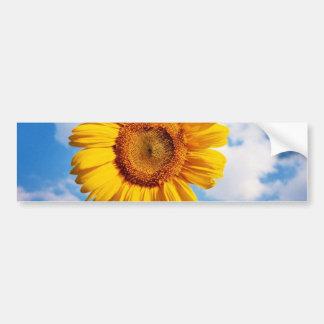 Sunflower - Sunflower Four Bumper Sticker