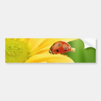 Sunflower - Sunflower Two Bumper Sticker