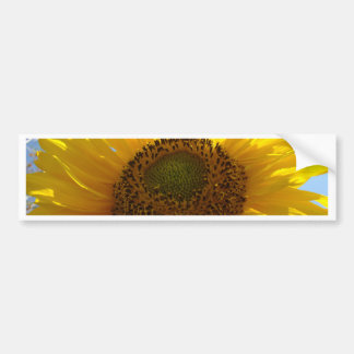 SUNFLOWER SunFlowers Sun Flowers Bumper Stickers