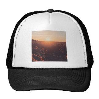 sunflower sunset field clothing trucker hat