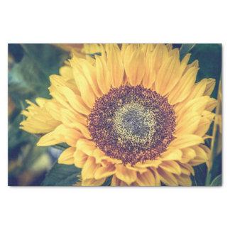Sunflower Tissue Paper
