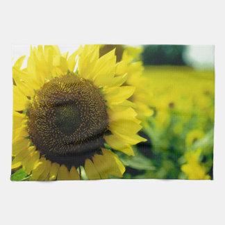 Sunflower Towels