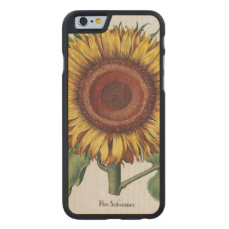 Sunflower Vintage Damask Wallpaper Collage Carved Maple iPhone 6 Case